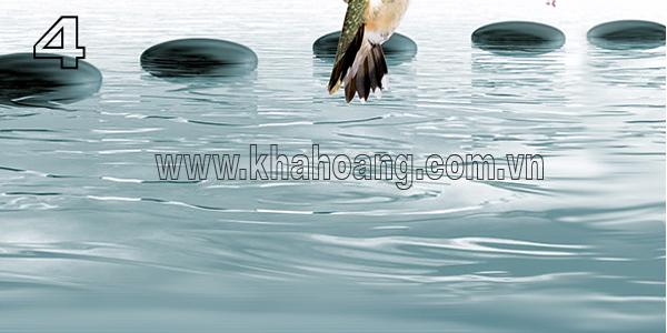 WAVE AQUA BIRD 4