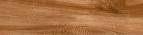 Gạch gỗ Ấn Độ (20x120cm)5402